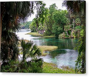 Dunnellon Canvas Print - The Rainbow River by Judy Wanamaker