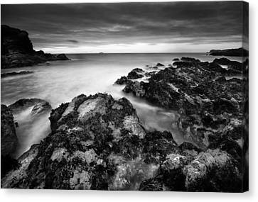 The Reef Canvas Print by Andy Astbury