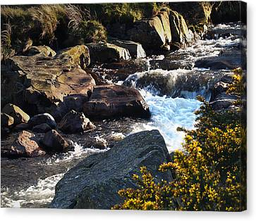 The River Caldew Canvas Print by Steve Watson