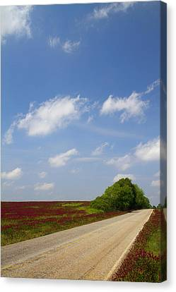 The Road Ahead Is Lined In Red Canvas Print by Kathy Clark