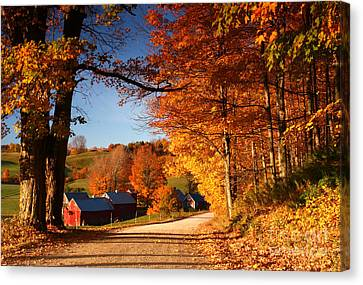 The Road To The Jenne Farm Canvas Print by Butch Lombardi