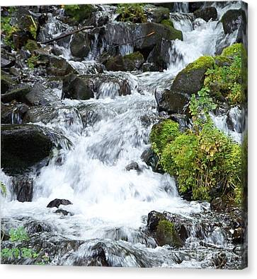 Canvas Print featuring the photograph The Roadside Stream by Chalet Roome-Rigdon