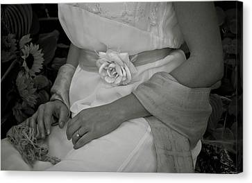 The Rose And Her Ring Canvas Print by Robin Robinson