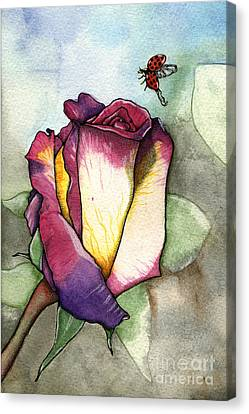 The Rose Canvas Print by Nora Blansett