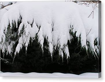 The Snow Cave Canvas Print