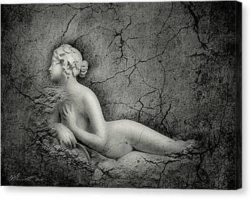 The Soul Of Stature Canvas Print