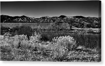 The South Platte Park Landscape II Canvas Print by David Patterson