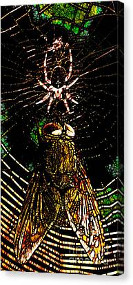 The Spider And The Fly In Abstract Canvas Print by Wingsdomain Art and Photography