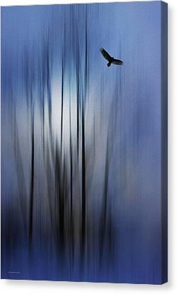 The Spirit Messenger Canvas Print