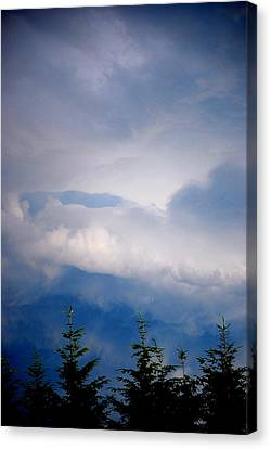 The Storms Brewing  Canvas Print