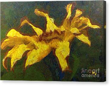 The Sunflower Canvas Print by Dragica  Micki Fortuna