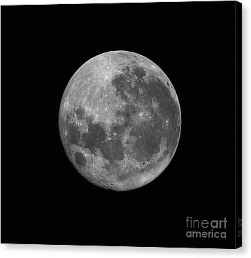 The Supermoon Of March 19, 2011 Canvas Print by Phillip Jones