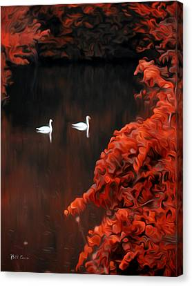 The Swan Pair Canvas Print by Bill Cannon