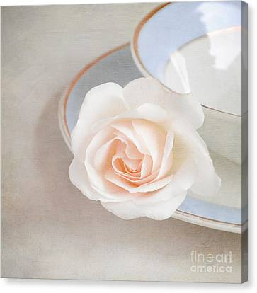 The Sweetest Rose Canvas Print by Lyn Randle