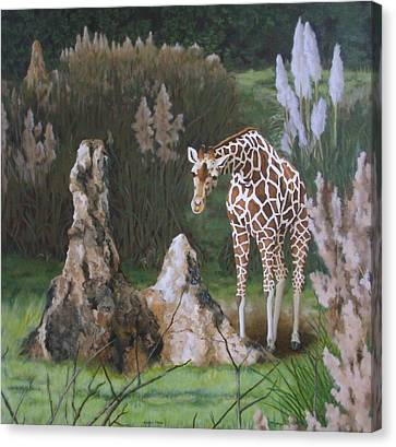 Canvas Print - The Termite Mounds by Sandra Chase