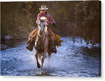Impasto Horses Canvas Print - The Territory Beyond by Janet Fikar