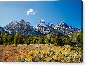 The Tetons Mountains Canvas Print by Robert Bales