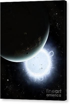 The Tiny Moon Rakka Ume Travels Canvas Print by Brian Christensen