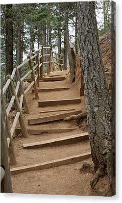 The Trail To The Top Canvas Print by Ernie Echols