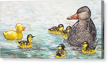 The Ugly Duckling Canvas Print by Beth Davies