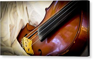 The Violin Canvas Print by Carolyn Marshall
