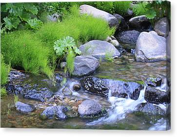 The Waterfall Canvas Print by Nance Eakins