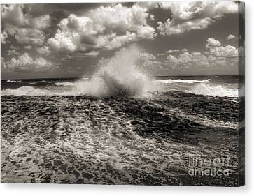 The Wave Canvas Print by Jeff Breiman