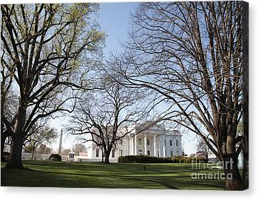 The White House And Lawns Canvas Print by Neil Overy