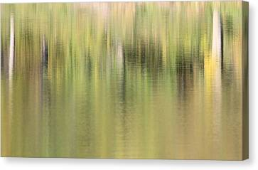 Canvas Print featuring the photograph The Woods by Penny Meyers