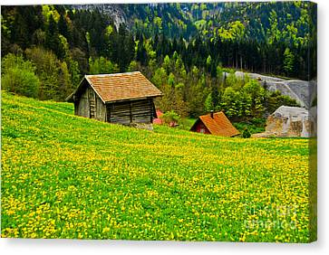 The Yellow Around Canvas Print by Syed Aqueel