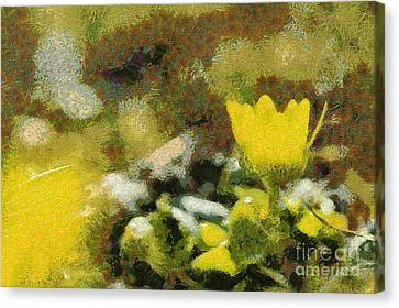 The Yellow Flower Canvas Print by Odon Czintos