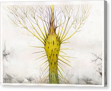 The Yellow Plant Canvas Print by Bjorn Eek