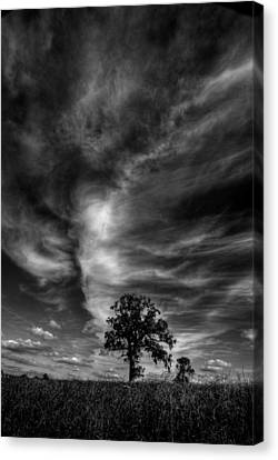 Canvas Print featuring the photograph There Can Only Be One by John Chivers