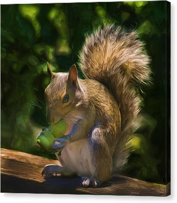 Bushy Tail Canvas Print - They Are Mine All Mine by Steven Richardson
