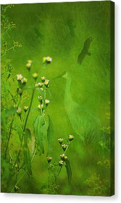 Think Green Canvas Print by Vicki Pelham
