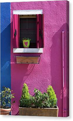 Canvas Print featuring the photograph Think Pink by Raffaella Lunelli