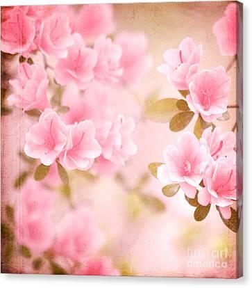 Think Spring Canvas Print by Kim Fearheiley