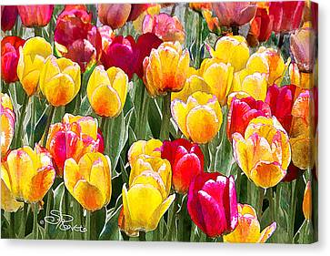 Think Spring Canvas Print by Suni Roveto