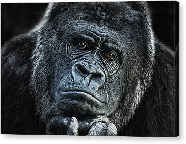 thinking about U Canvas Print by Joachim G Pinkawa