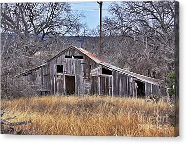 Canvas Print featuring the photograph This Old Barn by Joe Finney