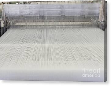 Threads In An Industrial Loom Canvas Print by Magomed Magomedagaev