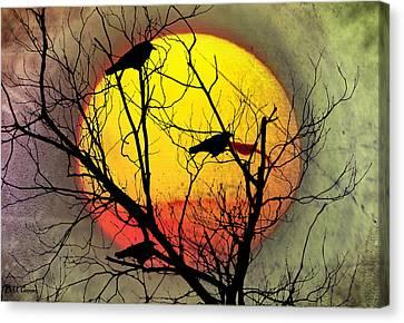 Blackbird Canvas Print - Three Blackbirds by Bill Cannon