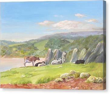 Three Cliffs Bay Gower Canvas Print by Maureen Carter