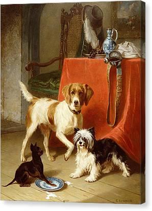 Three Dogs Canvas Print by Conradyn Cunaeus