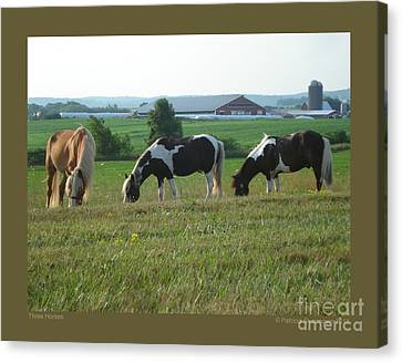 Three Horses Canvas Print by Patricia Overmoyer