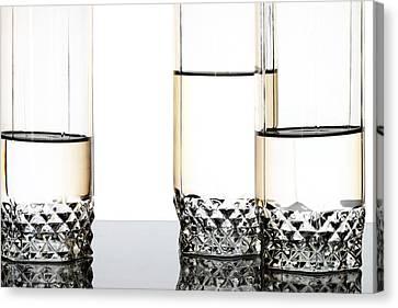 Three Luxury Glasses Canvas Print by Dmitry Malyshev