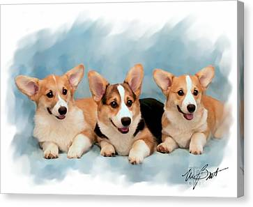 Three Musketeers Corgis Canvas Print by Maxine Bochnia