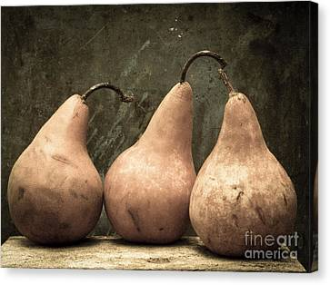 Three Pear Canvas Print by Edward Fielding