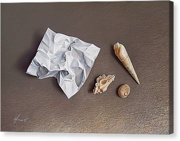 Three Shells For Collection Canvas Print by Elena Kolotusha