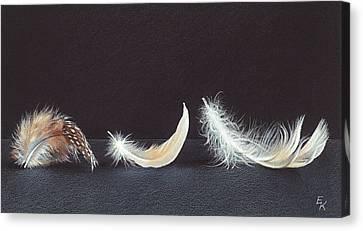 Three Wishes Canvas Print by Elena Kolotusha